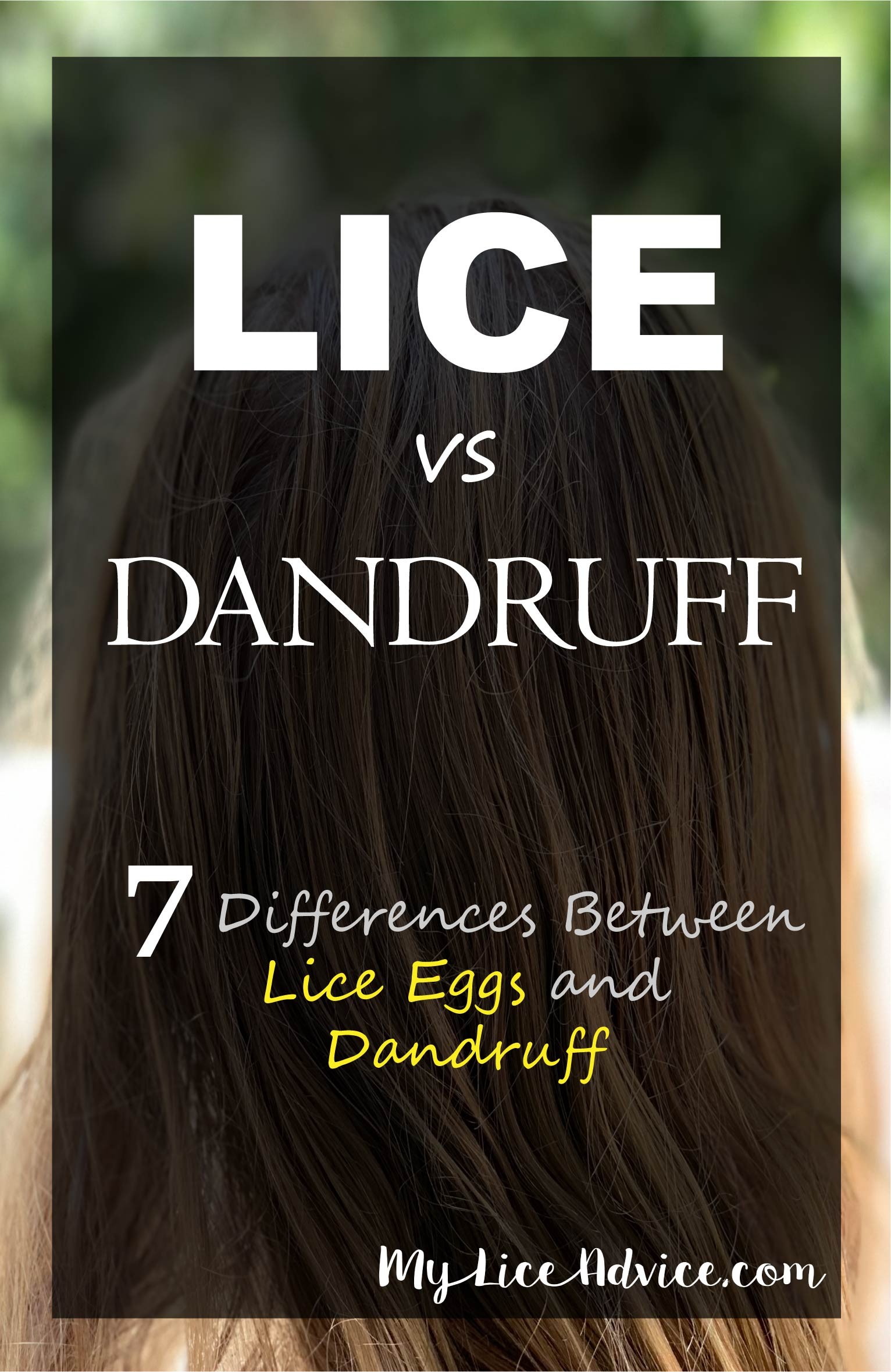 "A girl's hair is shown in the background with the words ""Lice vs Dandruff"" and the rest of the title on a translucent black rectangle."