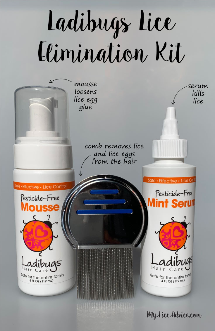 Ladibugs Lice Elimination Kit displayed with arrows pointing to each item