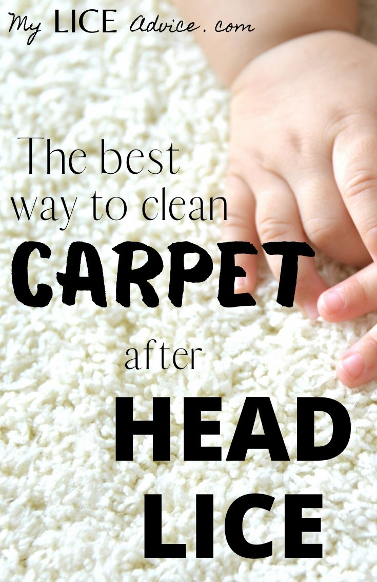 "A baby's hand is on top of white high pile carpet. The words ""The best way to clean carpet after head lice"" are written over the image."