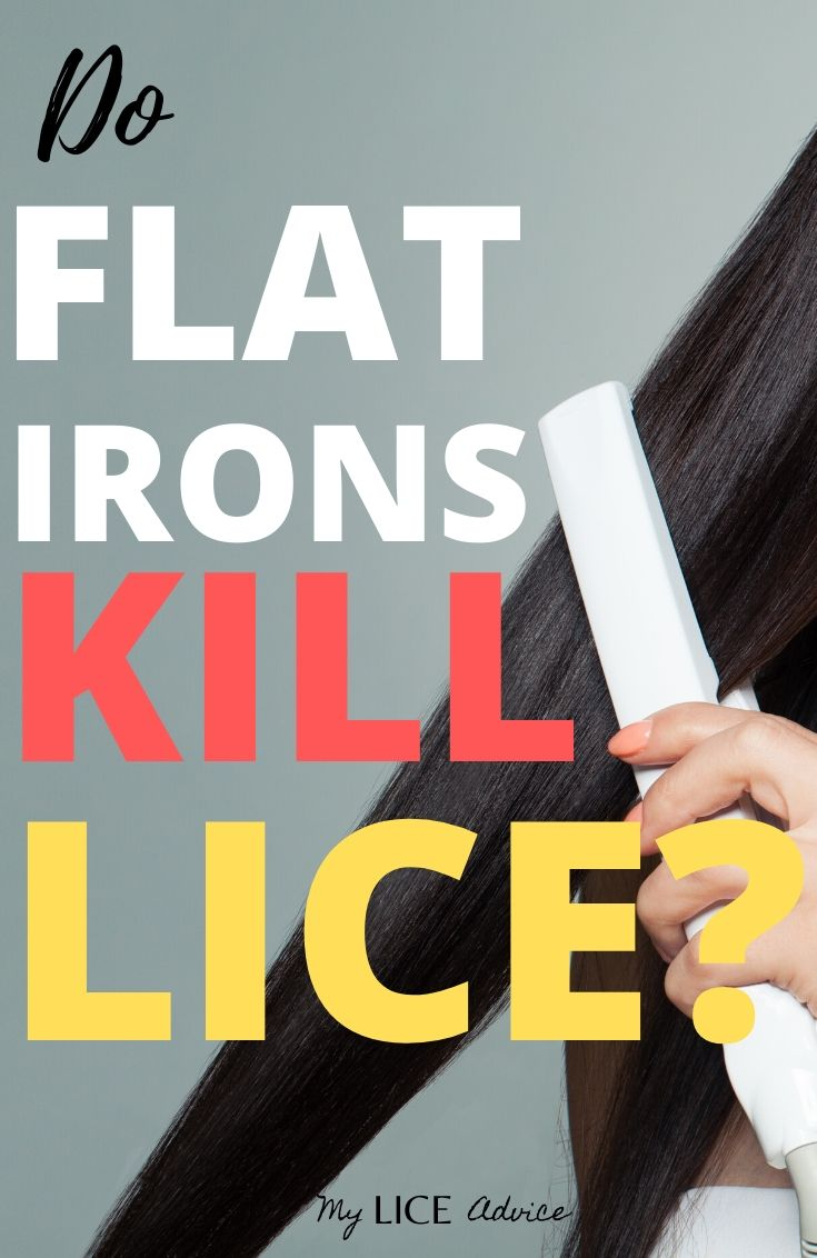 Explore whether or not flat ironing kills lice and lice eggs and if it can help you get rid of lice.