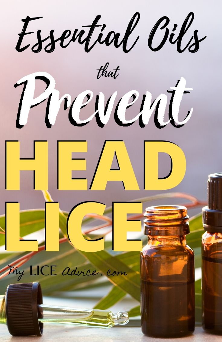 Discover the essential oils proven to effectively repel head lice and the 25 essential oil blends best at preventing lice. Create...