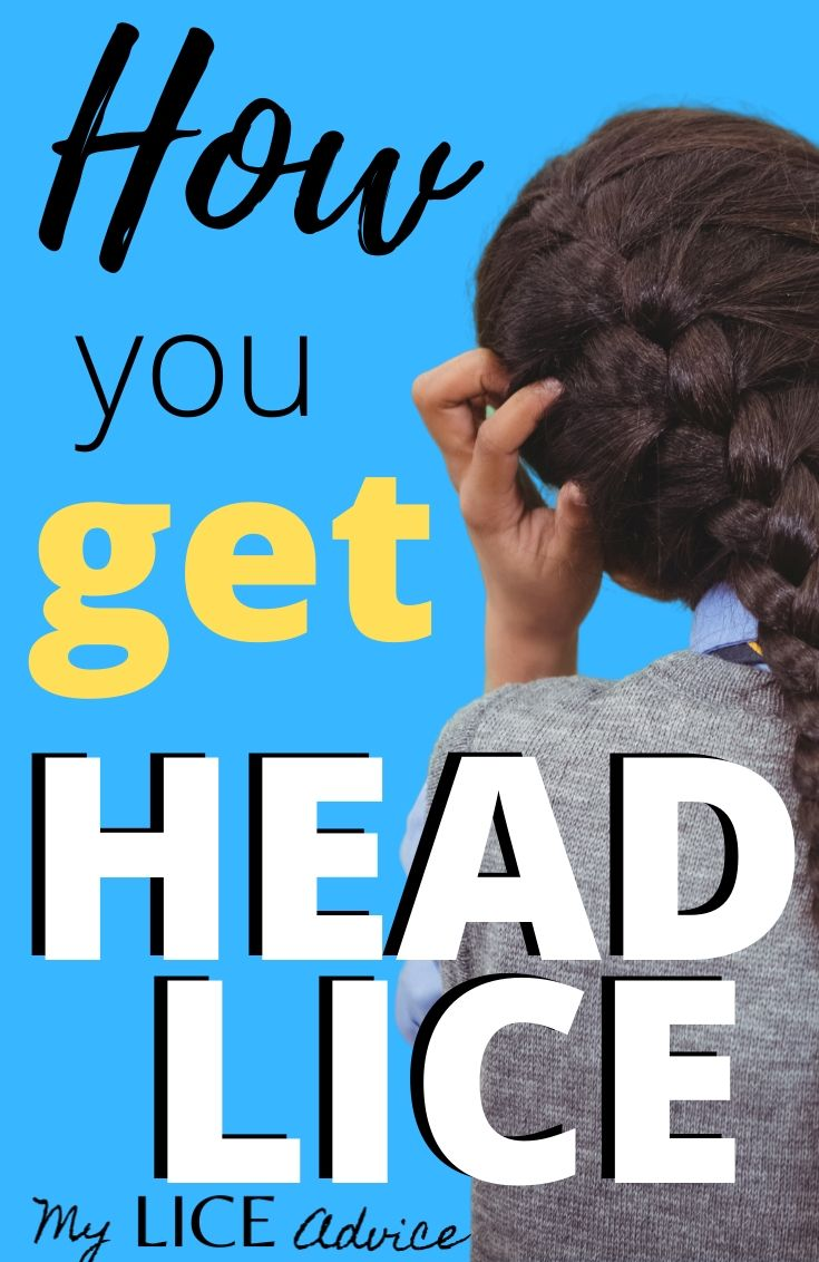 Discover exactly where, when, why and how you get head lice and what you can do to avoid getting head lice in the future.