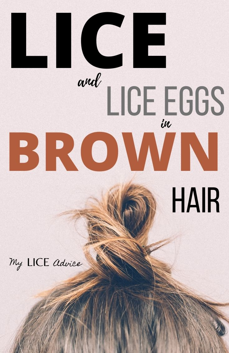 If you are finding brown bugs and brown nits in your hair you are not alone. Discover what lice and nits look like in brown hair and if lice can be brown.