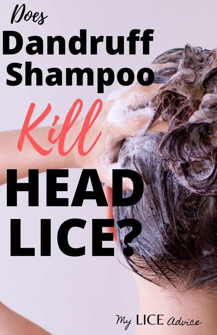 Discover if Head & Shoulders, Denorex, Selsun Blue and T-gel lice treatments are effective. Can dandruff shampoo kill lice?