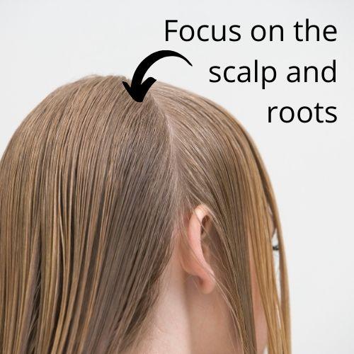 Focus on the scalp