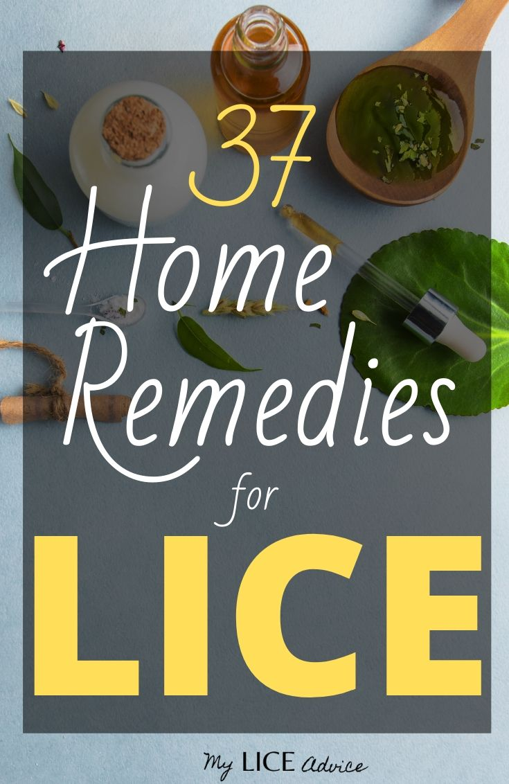 Discover the top 37 home remedies for lice and find out which remedies kill head lice and which home remedies can actually make lice worse!