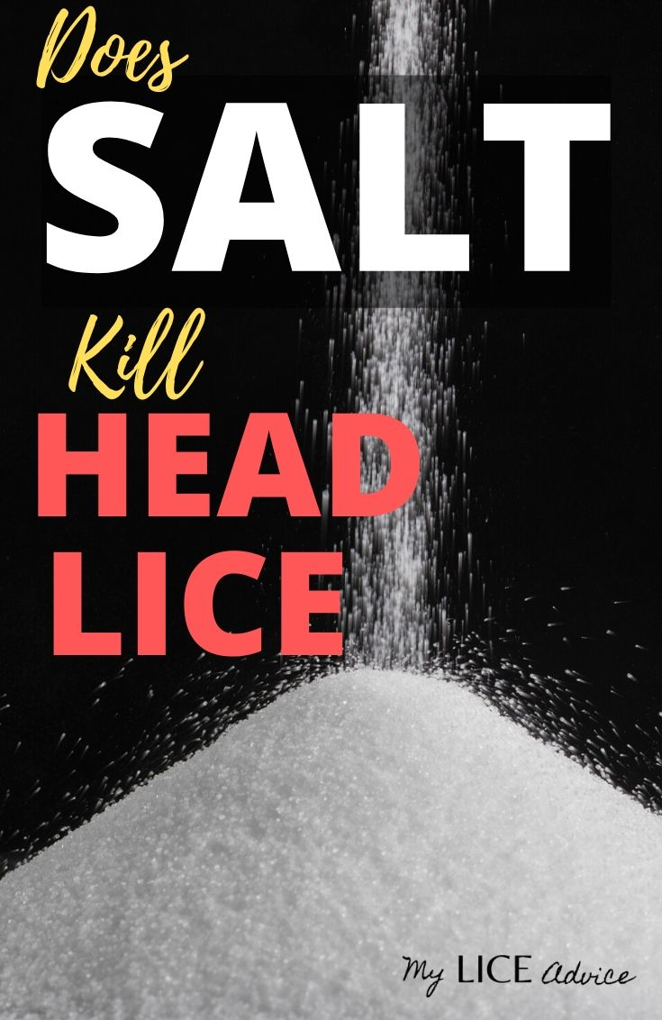 Is salt a good way to treat head lice? Discover how saltwater or mixing salt with vinegar effects lice and lice eggs.