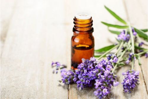 lavender oil featured image