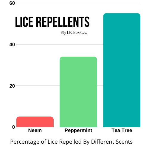 neem lice repellent (2)