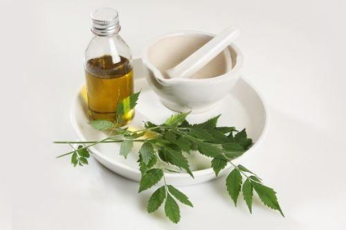 neem oil featured image