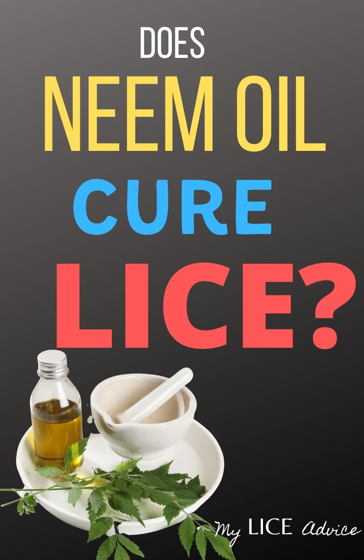 Discover whether neem oil is a good choice for lice treatment, how to use it, and how effectively neem oil kills and prevents head lice.