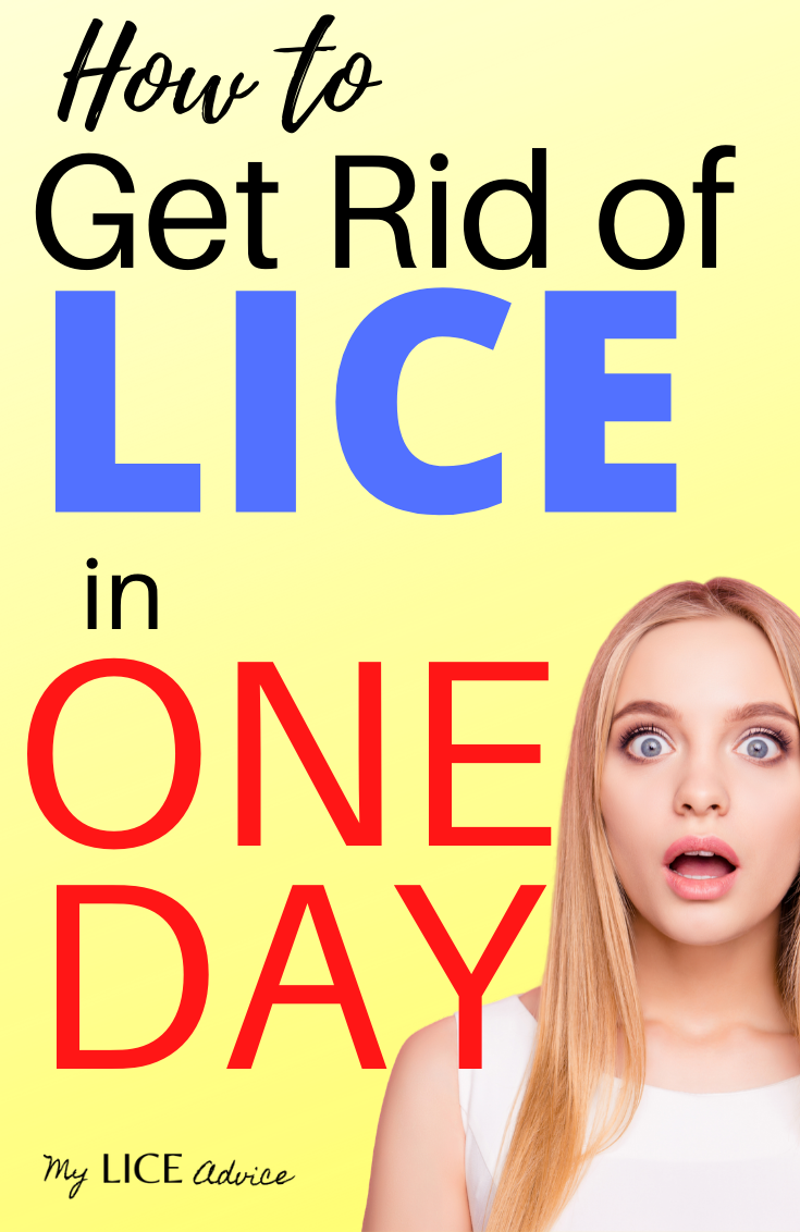 Get Rid of Lice in One Day (1)
