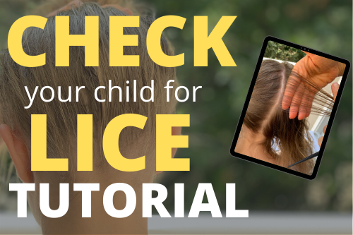 check your child for lice tutorial (1)