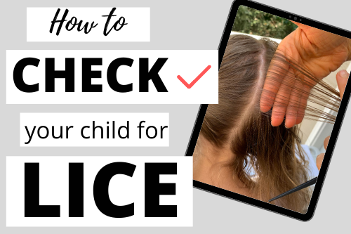 check your child for lice tutorial (2)