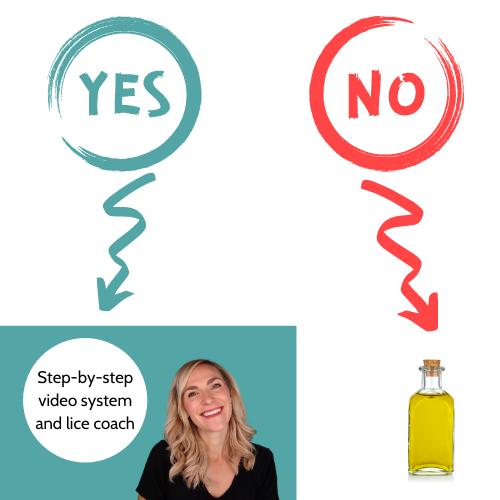 yes, no, no or